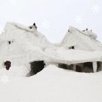 La Maison Québécoise Moyenne En 5 Chiffres Révélateurs