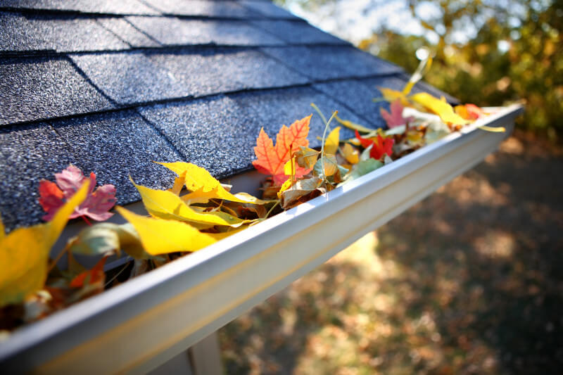 GUTTERS MAINTENANCE