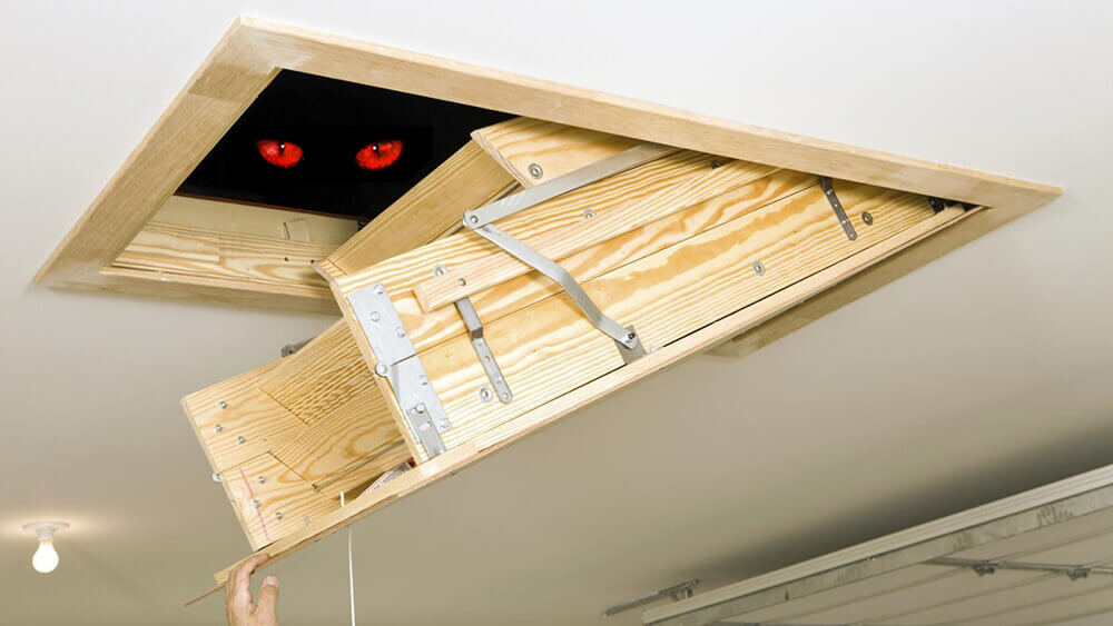Attic: Do Not Let This Mysterious Space Make You Sick